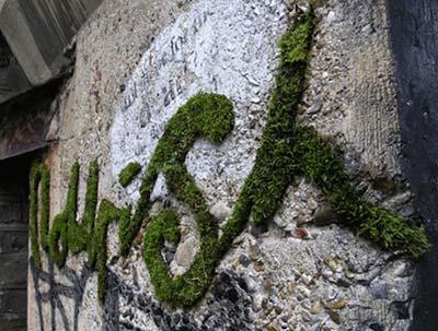 废物再利用:公共场所环保装饰品