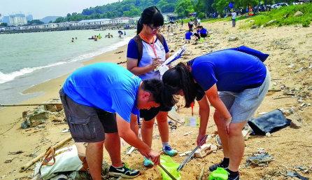 香港学生在淇澳岛沙滩分类垃圾